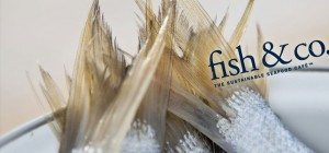 Icon Innovations - Fish & Co