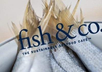 Fish And Co