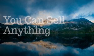 You Can Sell Anything - Icon Innovations